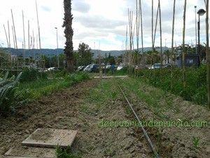 Huertos Ocio en Murcia El Agroocio, una alternativa para la Huerta