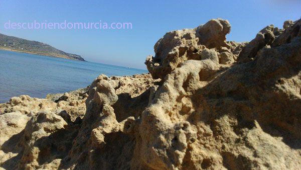 Calblanque Cartagena playas Nuestros chavales cuidan de los parques naturales