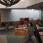 Preparada la IV edición de la Noche de los Museos en Cartagena