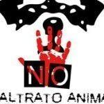 Manifestación contra el maltrato hacia los animales