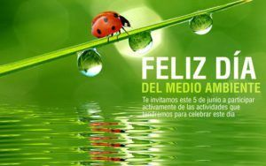 Dia Mundial del Medio Ambiente 300x188 Día Mundial del Medio Ambiente en Murcia