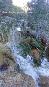 puerto cadena el valle murcia 169x300 La rambla del Puerto de la Cadena en El Palmar