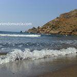 Concentración ecologista en la playa de El Gorguel