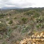 Buenos números para el turismo rural en Murcia