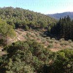 Espubike la ruta BTT que transcurre por Sierra Espuña