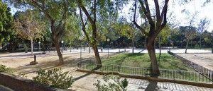 Jardin Botanico del Malecon Murcia 300x129 Se plantan especies autóctonas en el jardín del Malecón