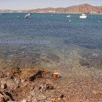 En marcha la Reserva Marina de Cabo Tiñoso en Cartagena