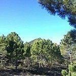 Pico-del-Buitre-Moratalla