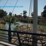 El río Segura, un 90% más limpio que en el año 2000