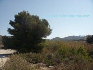 Turismo Rural Murcia 300x225 Murcia tiene el turismo rural más económico de España