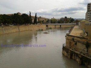 aumento caudal Segura Murcia 300x225 La sardina desaparece del río Segura