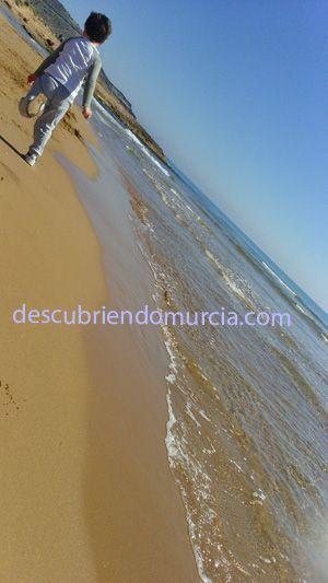 Calblanque ¿Te gustaría convertirte en Voluntario Ambiental de Murcia?