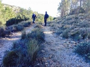 Sierra Espuna Murcia 300x225 ¿La Sierra de la Tercia o la  Sierra del Chíchar?