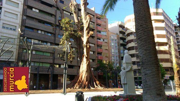 ficus santo domingo murcia Se restaurará la escultura de Ricardo Codorniú en el jardín de Santo Domingo