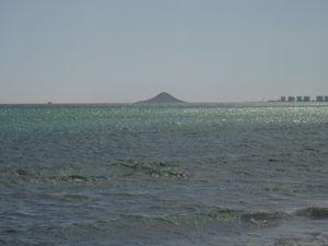 isla grosa la manga Proteger la fauna y la flora de la Isla Grosa y del Farallón en La Manga