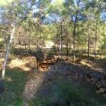 Los bosques de Murcia se convirtieron en barcos de guerra