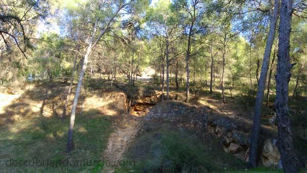 Murcia bosque Los bosques de Murcia se convirtieron en barcos de guerra