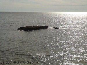 Bahia de Mazarron Islote del Ballenato 300x225 El Islote del Ballenato, que engaña a los curiosos en las noches de verano
