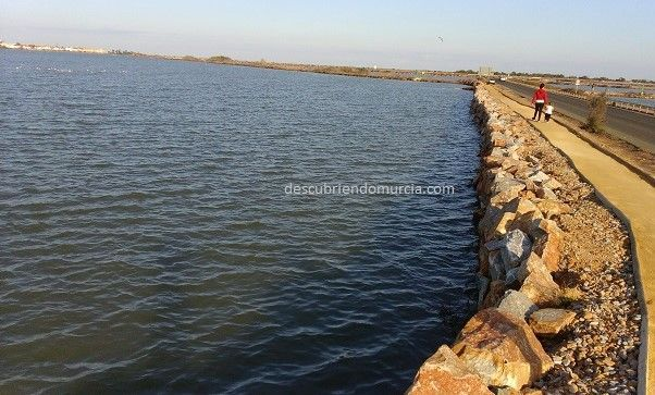salinas san pedro Salinas San Pedro del Pinatar: pesca, naturaleza y sal