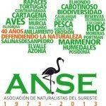 Asociacion ANSE