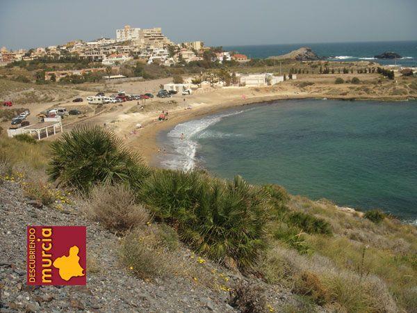 Cala Reona Cabo de Palos Cartagena Actividades Naturales Noviembre 2014 Espacios Naturales Murcia