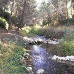 rio-alharabe-moratalla