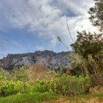 Cabo Tiñoso refugio para la naturaleza, los piratas y contrabandistas