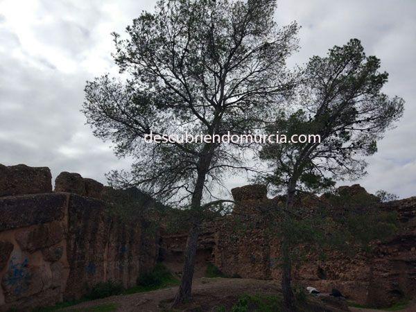 Castillo El Valle Murcia Descubiertos unos túneles bajo el Castillo de La Luz en Murcia
