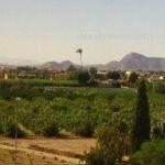 Habla Catalana en la Región de Murcia ¿Hablamos Catalán? Parte II