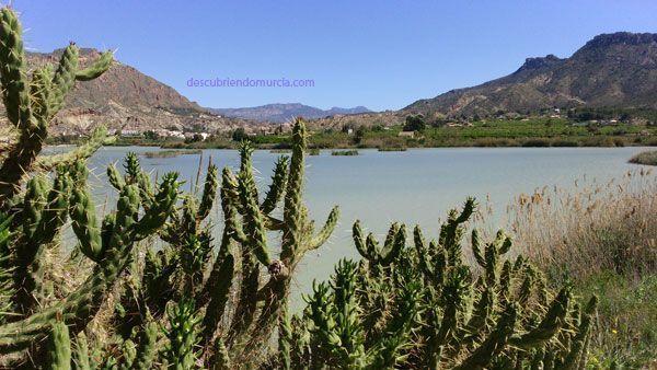 valle de ricote Valle de Ricote, tierra de místicos y revueltas moriscas